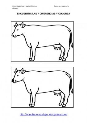encuentra la diferencia orientacion andujar imagenes_46