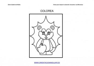 COLOREAMOS DIBUJOS DE ERIZOS IMAGENES_05