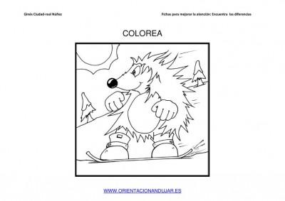 COLOREAMOS DIBUJOS DE ERIZOS IMAGENES_06