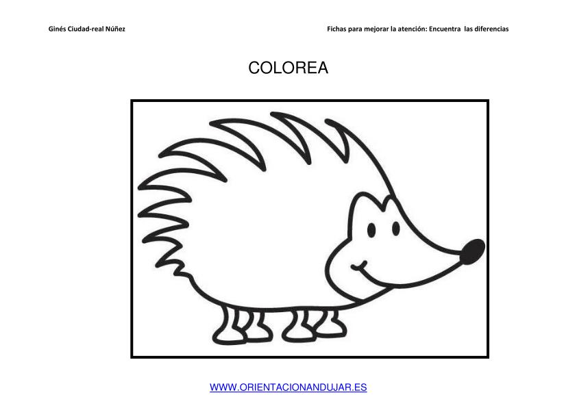 Contemporáneo Nudillos El Erizo Para Colorear Friso - Dibujos Para ...