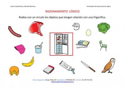 RAZONAMIENTO  LÓGICO categorizar y agrupar  FRIGORIFICO COLOR IMAGEN