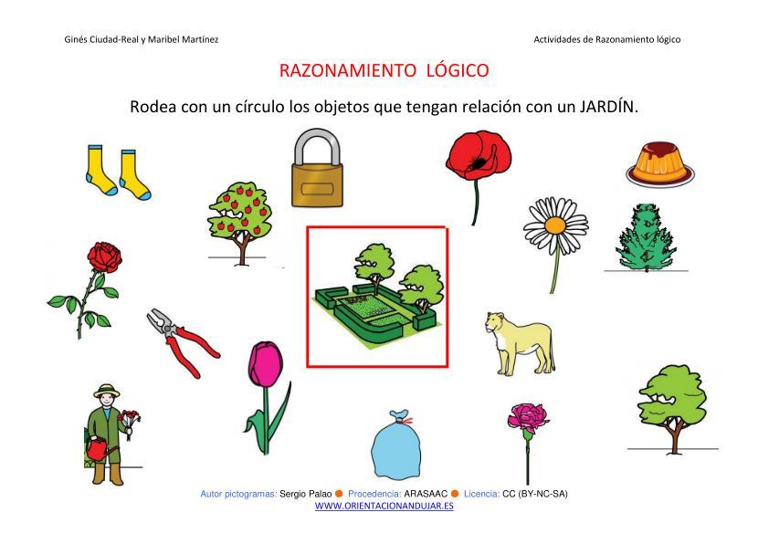 Razonamiento l gico categorizar y agrupar jardin color for Actividades para jardin