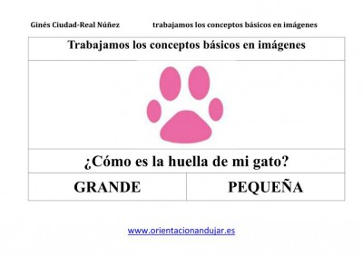 TRABAJAMOS LOS CONCEPTOS BASICOS IMAGENES_19