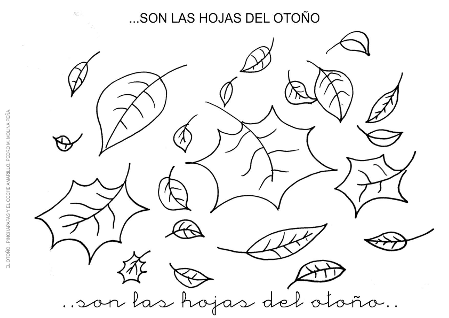2. SON LAS HOJAS DEL OTOÑO - Orientación Andújar - Recursos Educativos