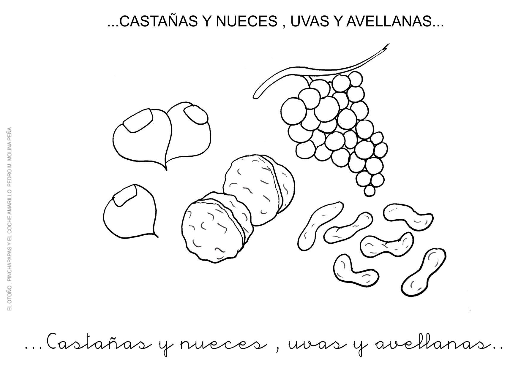 Dibujos De Castanas Para Colorear E Imprimir: 9.CASTAÑAS Y NUECES......