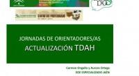 Os dejamos un nuevo material superinteresante se trata de una presentación de Carmen Ongallo y Aurora Ortega del Equipo Especializado de Jaén en trastornos graves de conducta. OBJETIVO JORNADAS ACTUALIZACIÓN […]