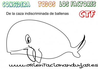 caza de ballenas ctf