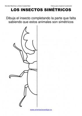 Funciones del hemisferio izquierdo y el derecho