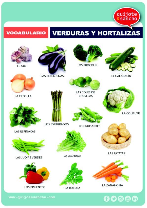 verduras y hortalizas orientaci n and jar recursos On plantas hortalizas ejemplos