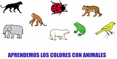 aprendemos lo colores con animales