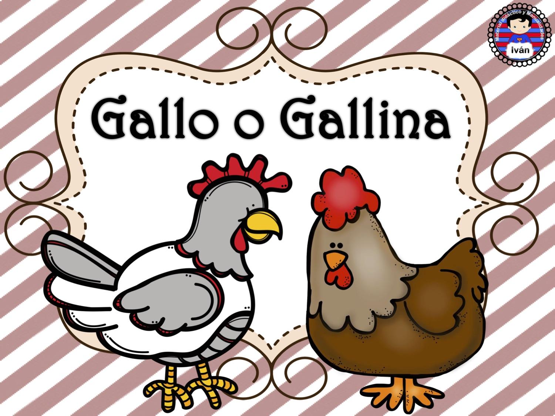 ciclo de vida de la gallina 6 - Orientación Andújar ...