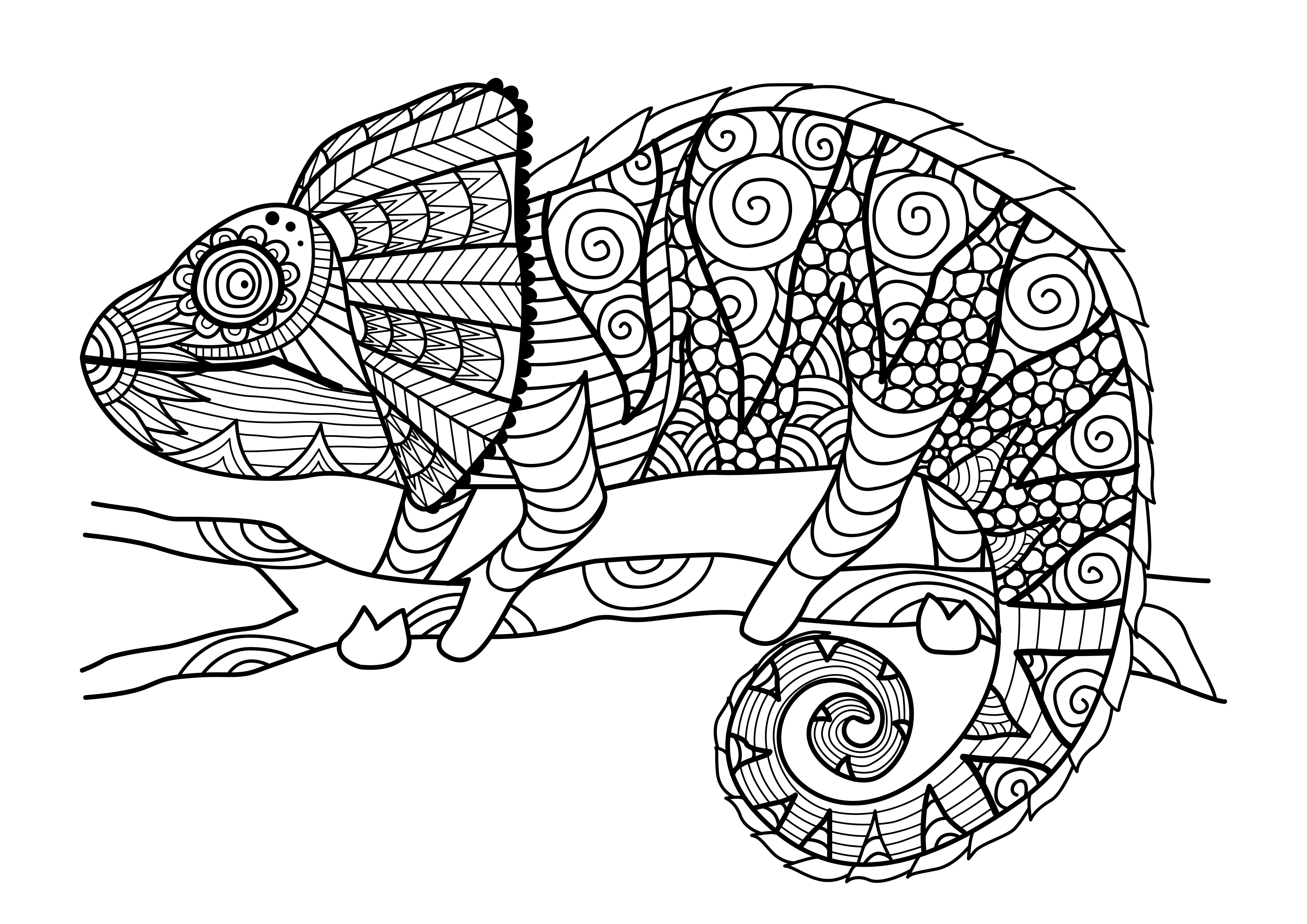camaleon - Orientación Andújar - Recursos Educativos